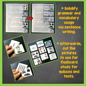 Trifold Flashcards