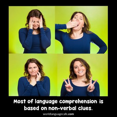 Non-verbal communication, target language, comprehensible input
